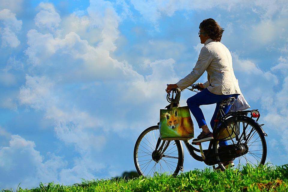 Для жителей пройдет познавательная велоэкскурсия