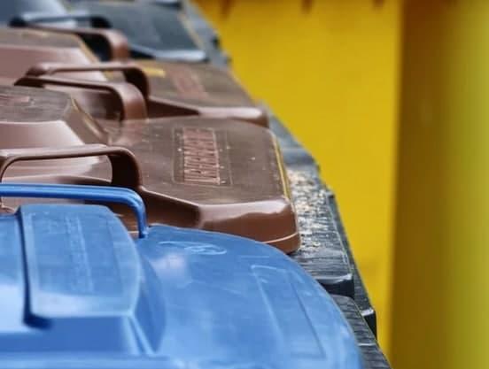 В Измайловском лесопарке пройдёт акция по уборке мусора